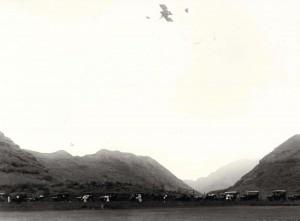 """The biplane swooped down like a monstrous hawk charging on its prey. . ."" Honolulu Advertiser 1/1/1911"