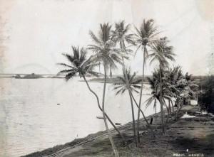Railroad tracks along Pearl Harbor 1890.