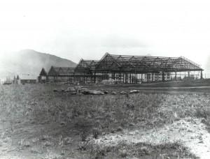 Wheeler Field, Oahu, 1932.
