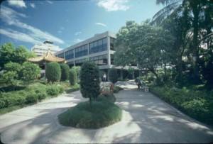 Gardens, Honolulu International Airport, 1987.