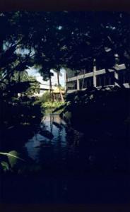 Hawaiian Garden, Honolulu International Airport, 1987.