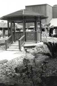 Pergola in garden at Lihue Airport, Kauai, February 1987.