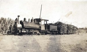 Ewa Plantation Locomotive #6, 1926.
