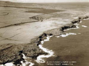 Upolu Point Field, Hawaii, February 3, 1929.