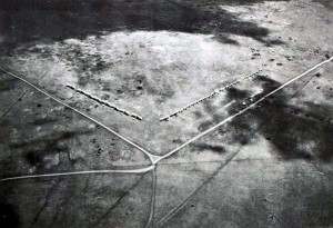 Homestead Field, Molokai, 1931