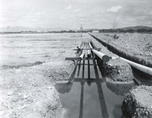 Construction of the Standard Oil pipeline through Honolulu International Airport, 1959.