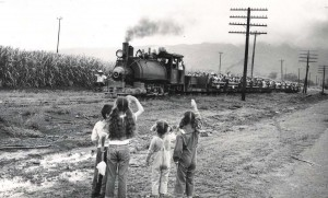 Waialua Agriculture Co., Oahu, railroad last run 1953.