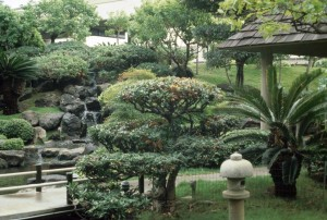 Japanese Gardens, Honolulu International Airport, 1987.