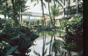 Hawaiian Garden, Honolulu International Airport, 1987.